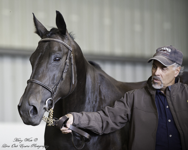 Laura and Rob at the 2012 Hanoverian Inspection. Photo credit thanks to: Mary White