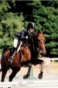 This is Geriko. Last I heard this gelding out of a T.B. dam was showing in the hunters placing well over fenses and won several equitation flat classes at A shows. he is located in Milton Massachusetts.