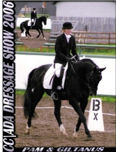 This is Giltanus seen here with rider Pam of Alberta Canada, competing in dressage.